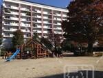 小松川たんぽぽ公園