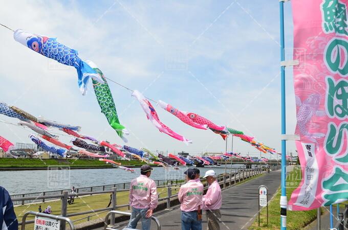 第10回小岩鯉のぼり祭