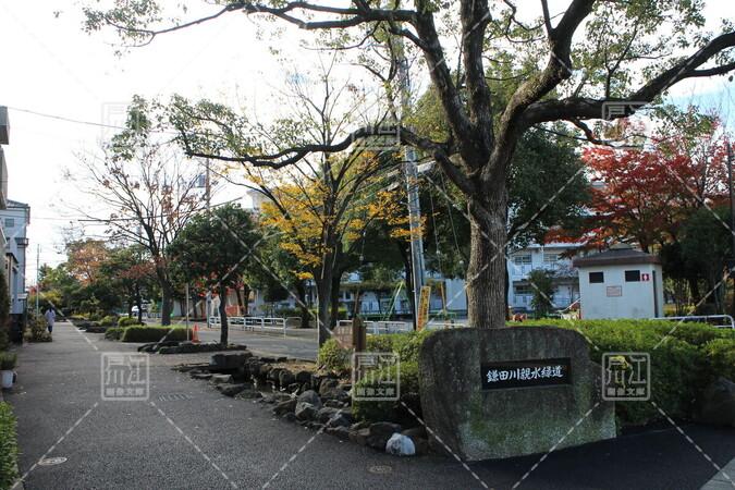 鎌田川親水緑道