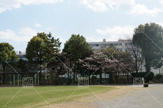 平井わかばと公園