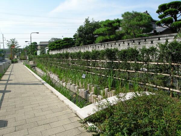 東井堀親水緑道