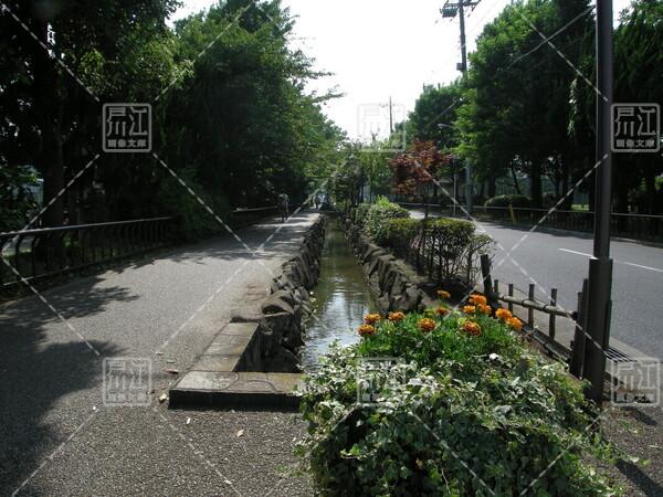 本郷用水親水緑道