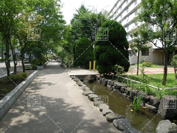 椿親水緑道