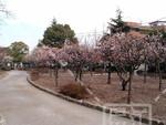 宇喜田東公園