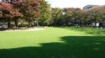 文化センター公園