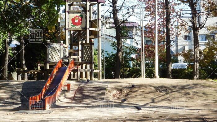 春江ツバキ公園