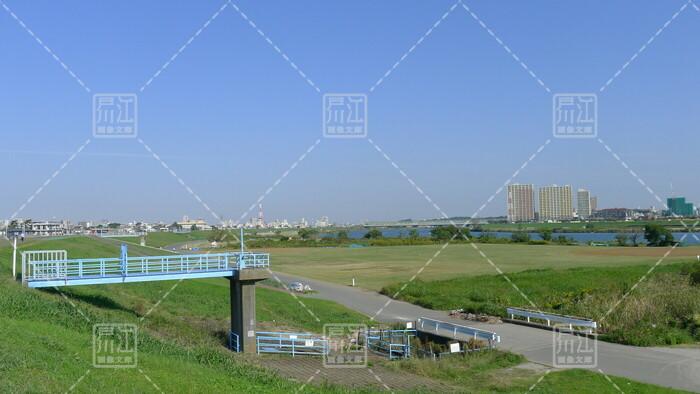 江戸川緑地