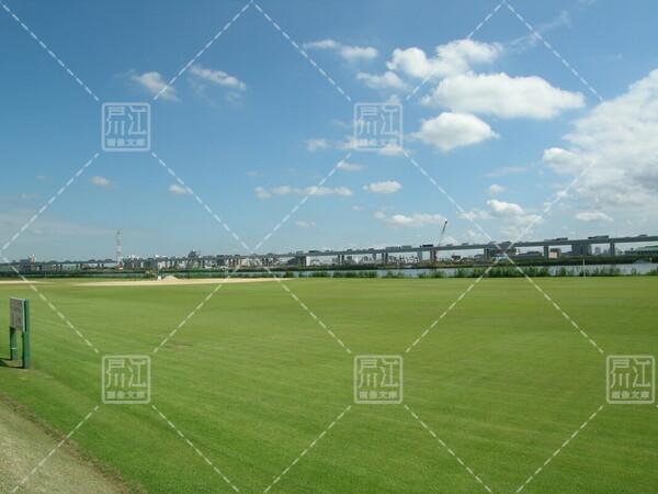 小松川運動公園