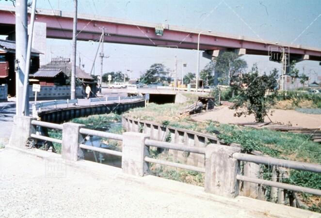 一之江境川親水公園