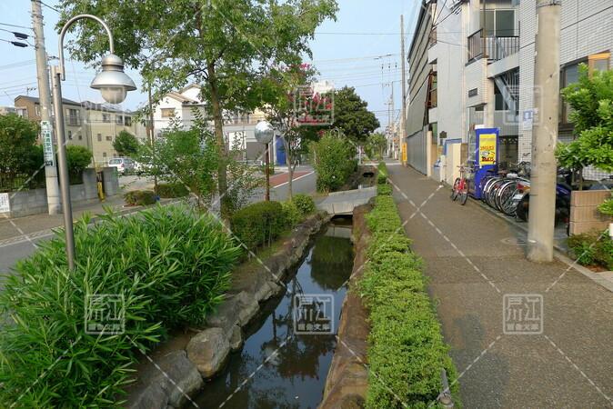 篠崎7丁目
