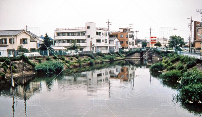 左近川親水緑道
